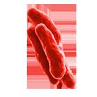 disinfezione aria contro tubercolosi_servizi&innovazioni