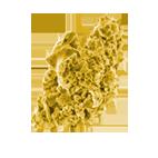 disinfezione aria_asma_servizieinnovazioni
